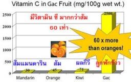 ในฟักข้าว 1 ผลมีปริมาณ วิตามิน ซี สูง 60 เท่าของส้ม